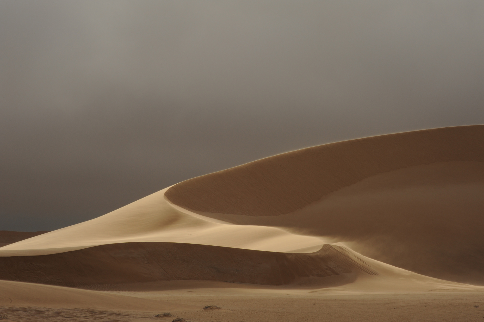 Letzte Sonnenstrahlen auf den Duenen -Last rays on the Dunes