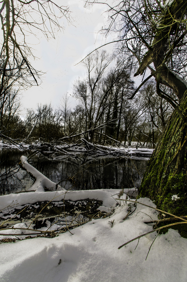 Letzte Tage im Winter
