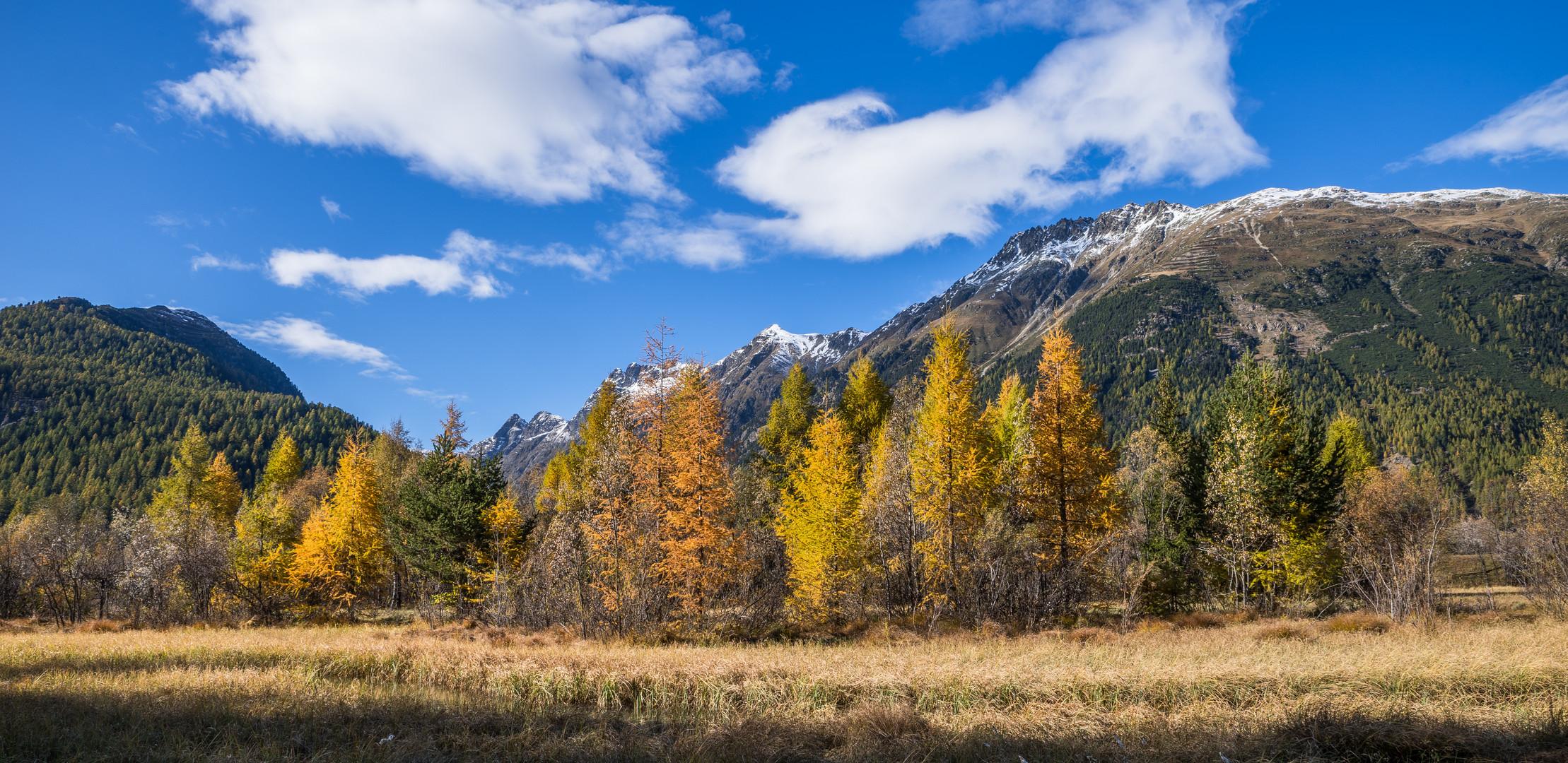 Letztes Herbstbild