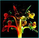 Leuchtblumen Lampe