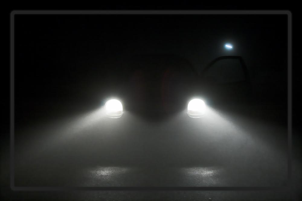 leuchtende augen in der nacht