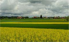 Leuchtende Felder