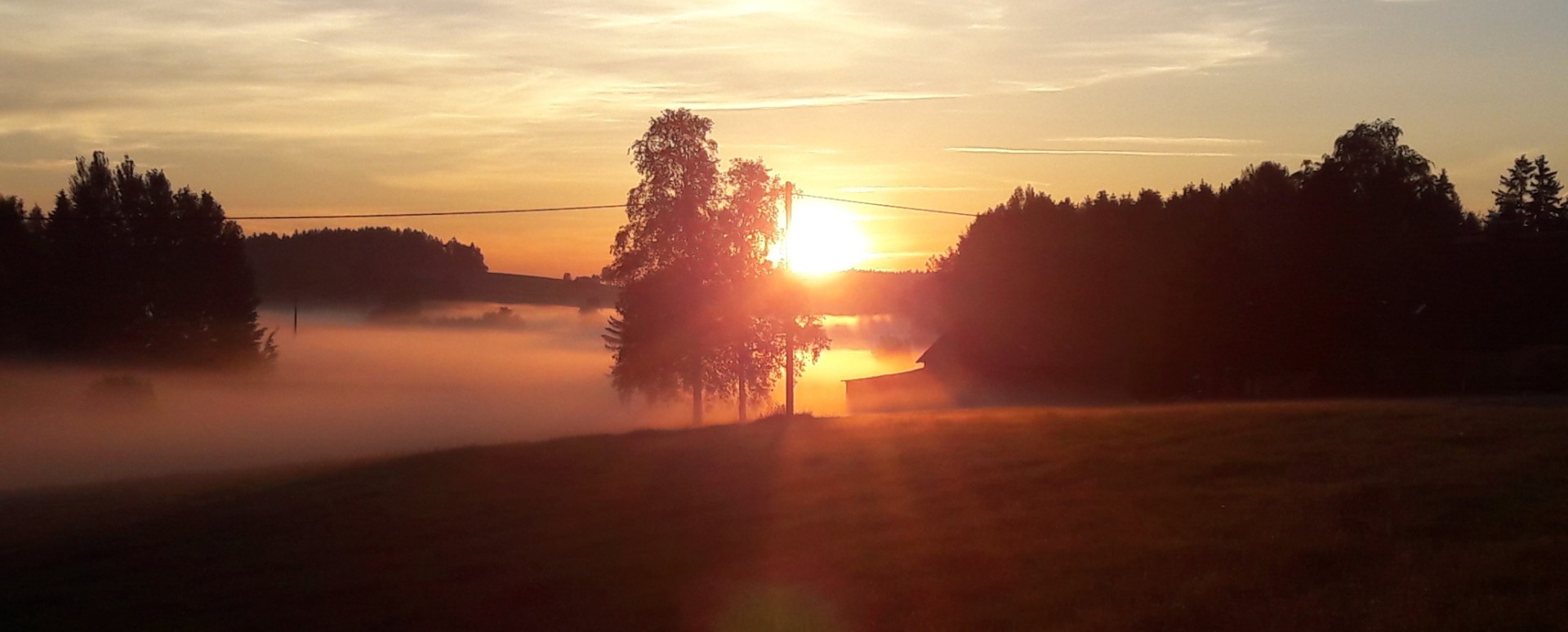 Leuchtender Nebel  Sommersonnenaufgang