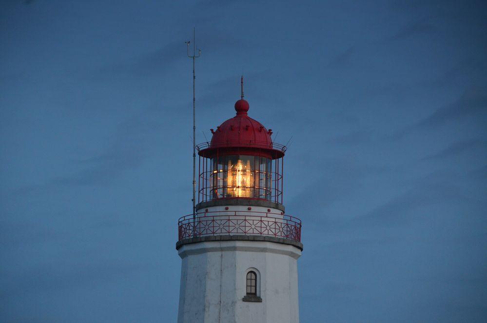 Leuchttum Dornbusch  im Juni 2018