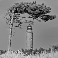 Leuchtturm Darß