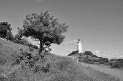 Leuchtturm  Dornbusch am 7.9 2020