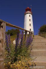 Leuchtturm Dornbusch ENDE Juni