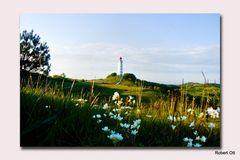 Leuchtturm im Mai