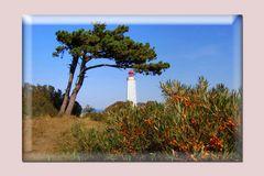 Leuchtturm im September Insel Hiddensee