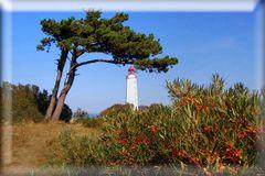 Leuchtturm Insel Hiddensee