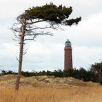 Leuchtturm Steffen Rolle farbig