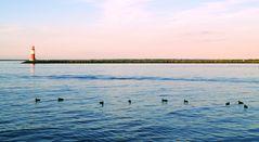 Leuchtturm und Vögelchen auf der Ostsee