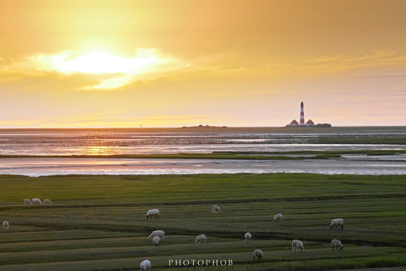 Leuchtturm Westerhever im Sonnenuntergang