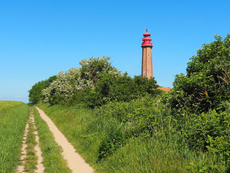 Leuchtturm_am_Weg