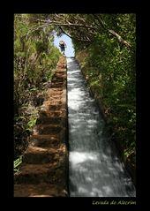 Levada do Alecrim - Wassertreppe