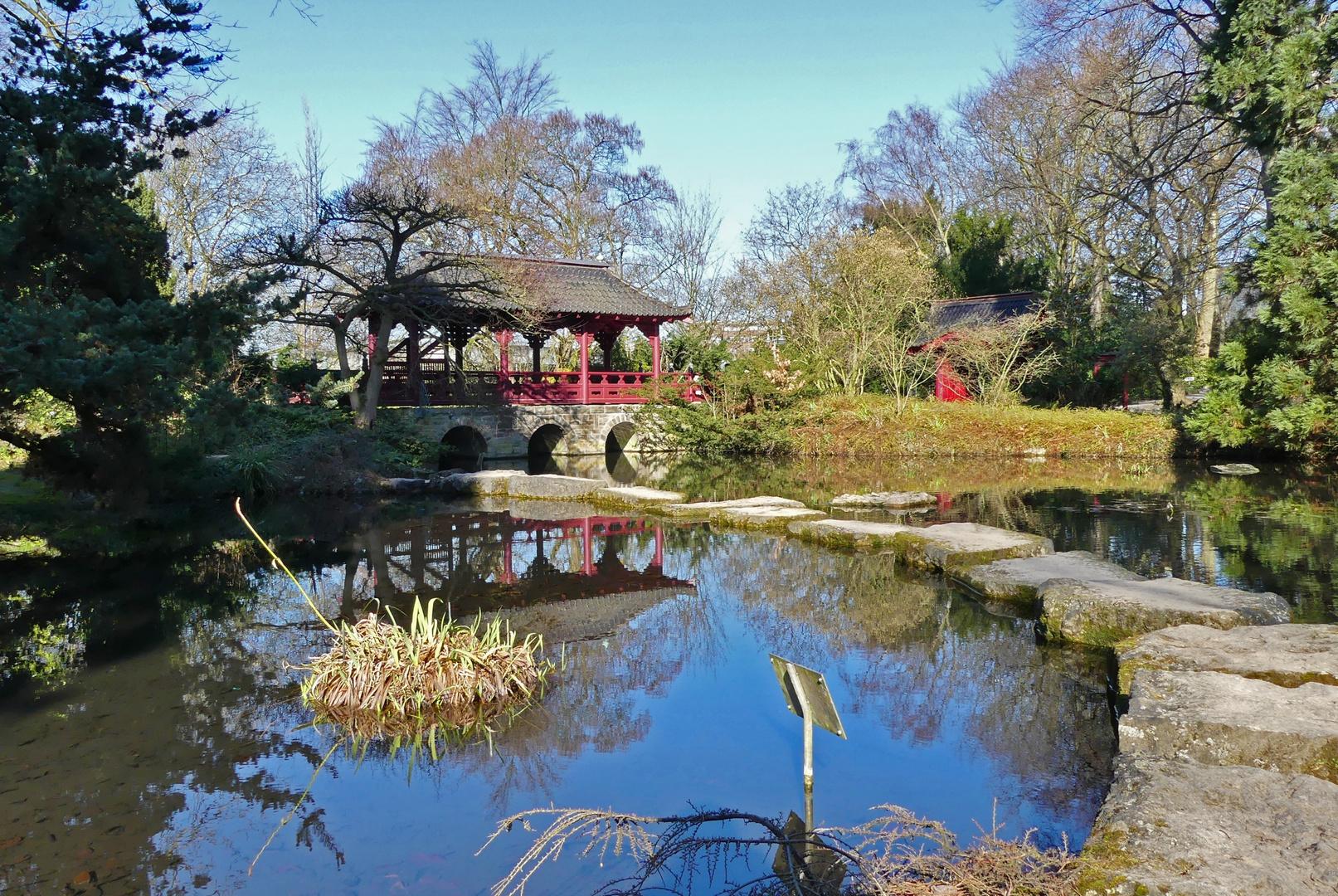 Leverkusen Heute Morgen Im Japanischen Garten Foto Bild World