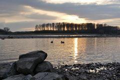 Leverkusen-Hitdorf - Heutiger Sonnenuntergang