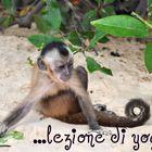 ...lezione di yoga...