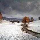 L'hiver aux trousses.......