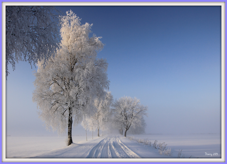L`hiver dans la Forêt Noire