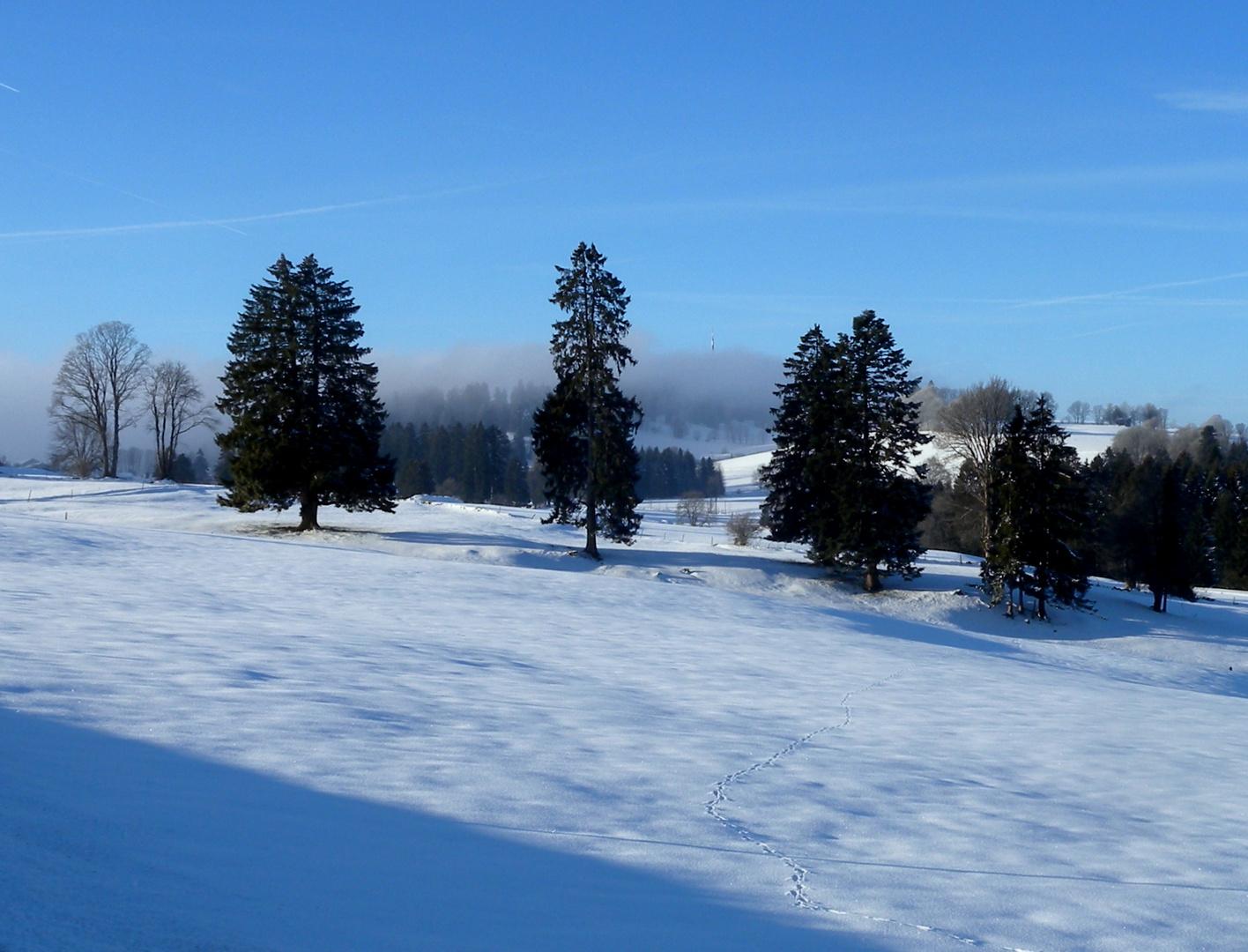 L'hiver dans le.. / Invierno en el.. / Winter im = Jura...04