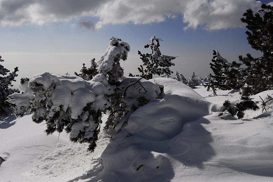 L'hiver tout simplement