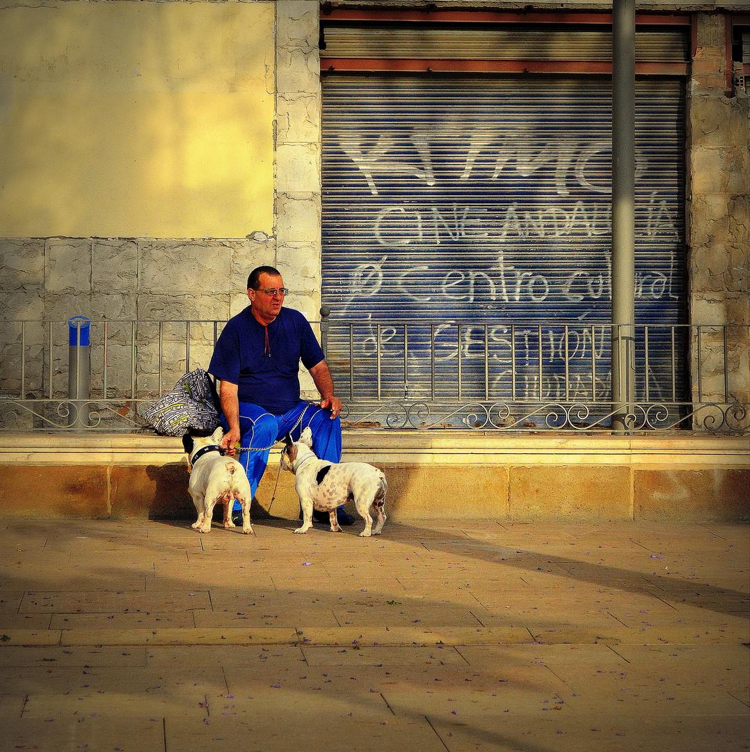 l'homme aux chiens