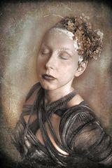 L'hortensia fané