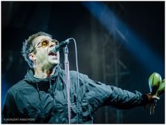 [liam gallagher - stimmen 003_2]
