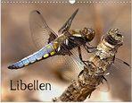 Libellen - Jetzt zu kaufen als Kalender