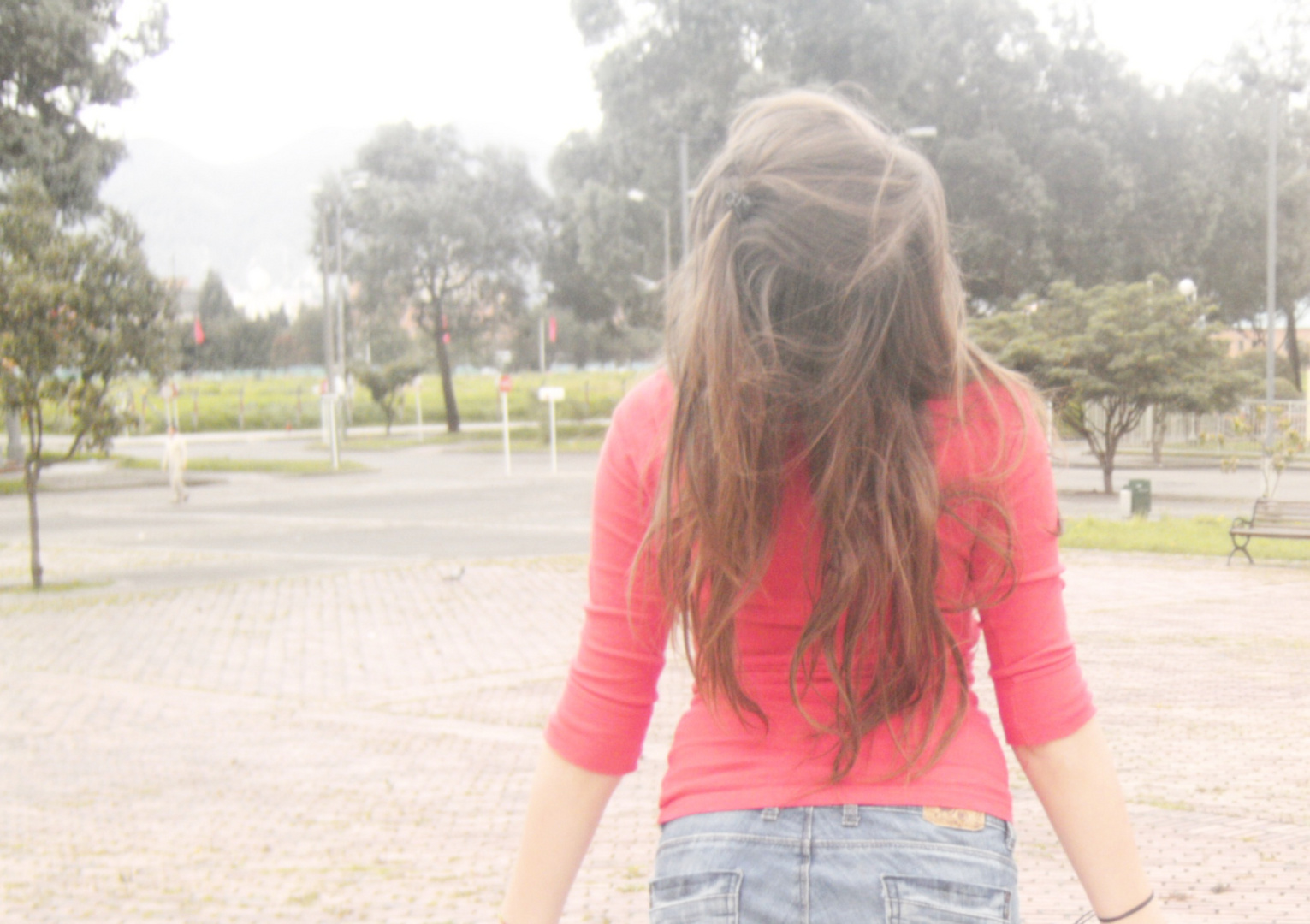 Libertad-Anima.