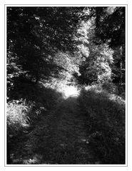 """"""" Licht am Ende des Weges """""""