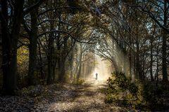 Licht am Ende des Weges...