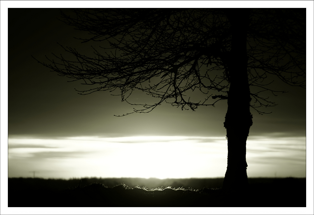 Licht am Horizont