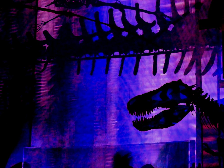 Licht an! Im Reich der Dinosaurier