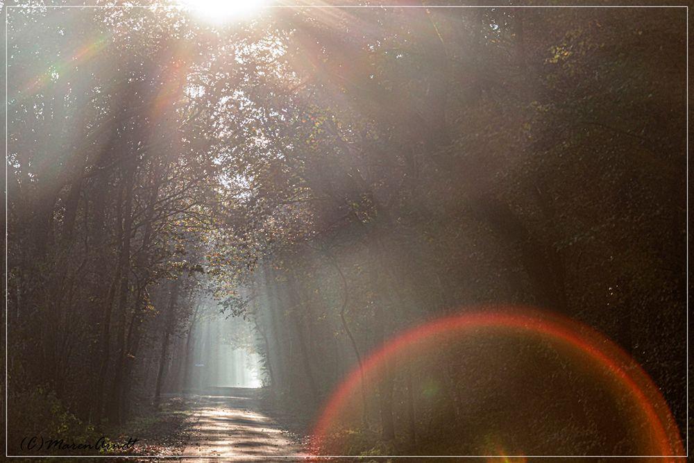 Licht aus meinem kleinen Dorf