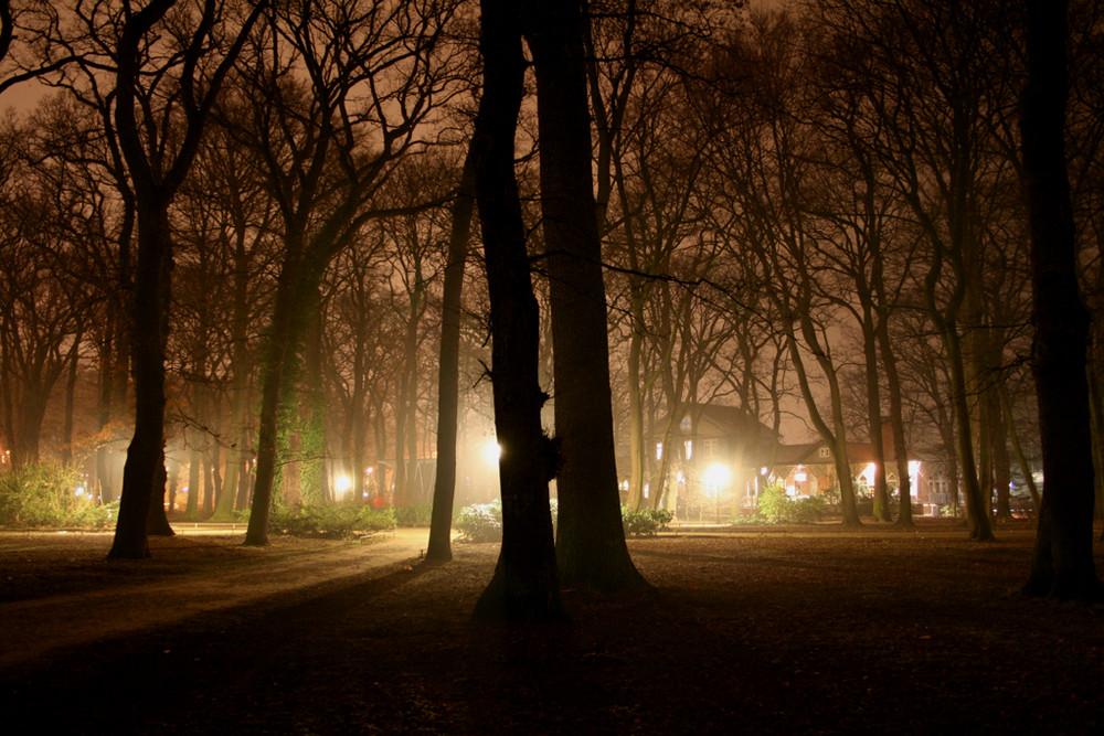 Licht der Dunkelheit