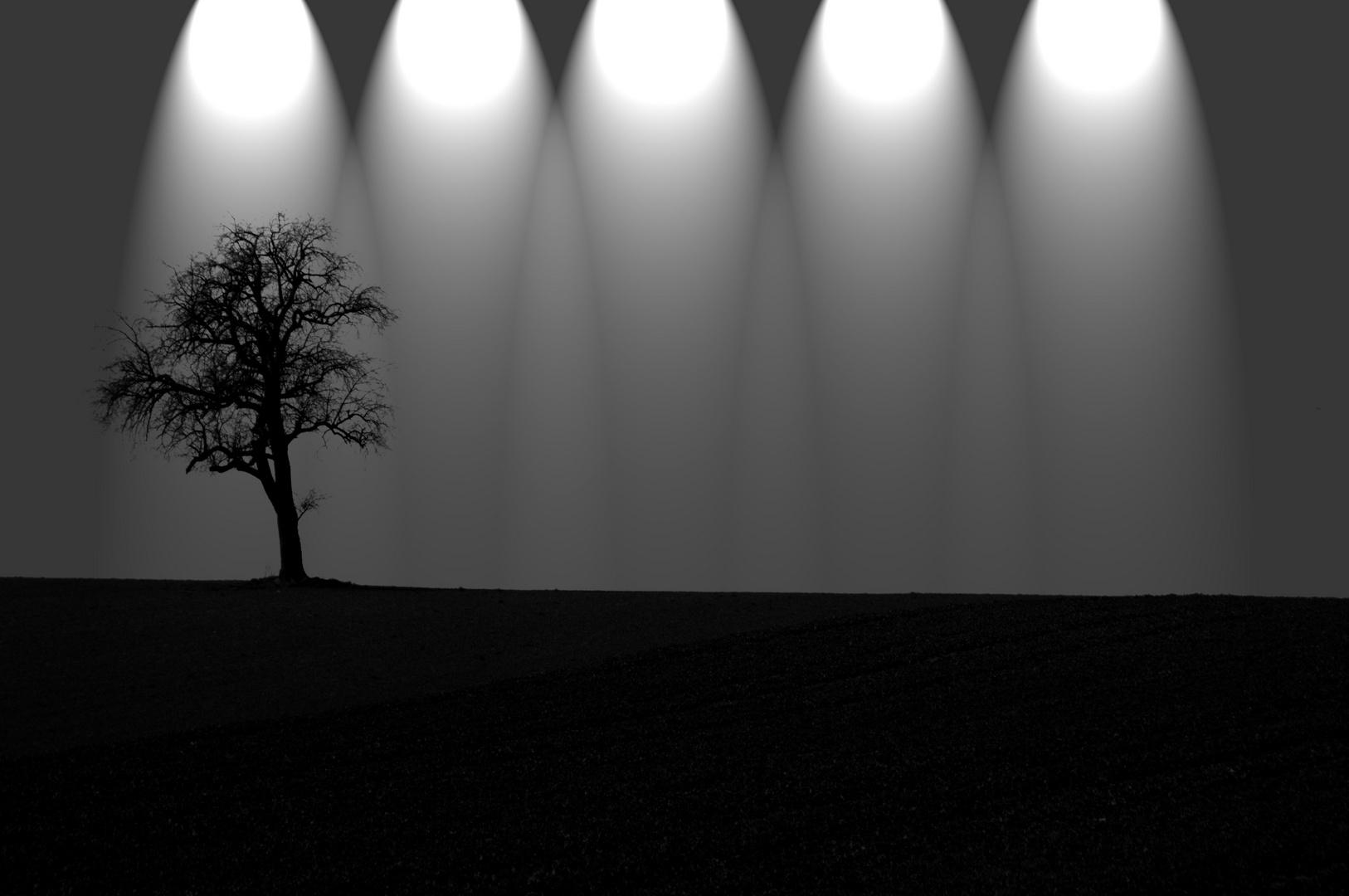 Licht der Natur ?