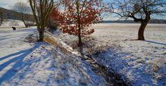 Licht des Winters, 2 (luz del invierno, 2)