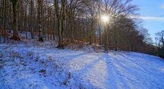 Licht des Winters, 4 (luz del invierno, 4)