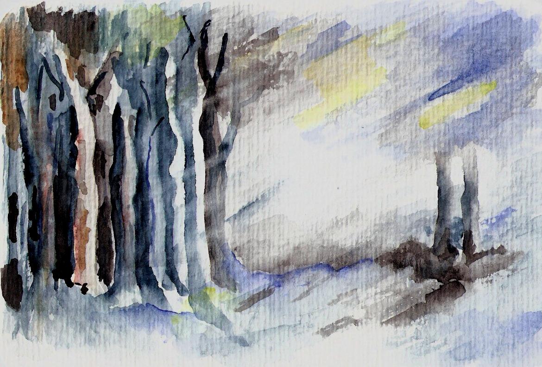 Licht im dunklen Wald