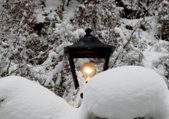Licht in der Kälte