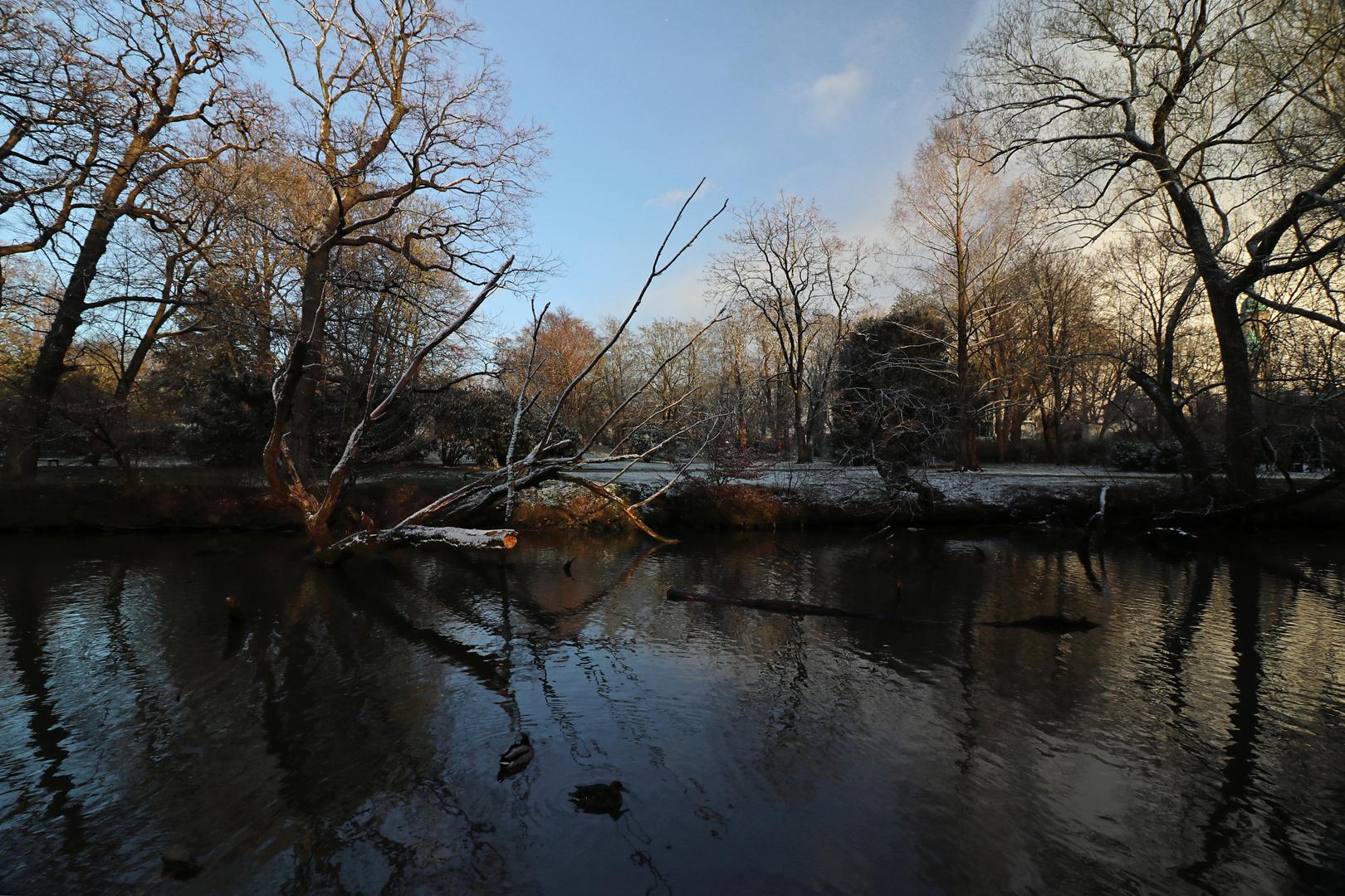 Licht nach dem Schneefall