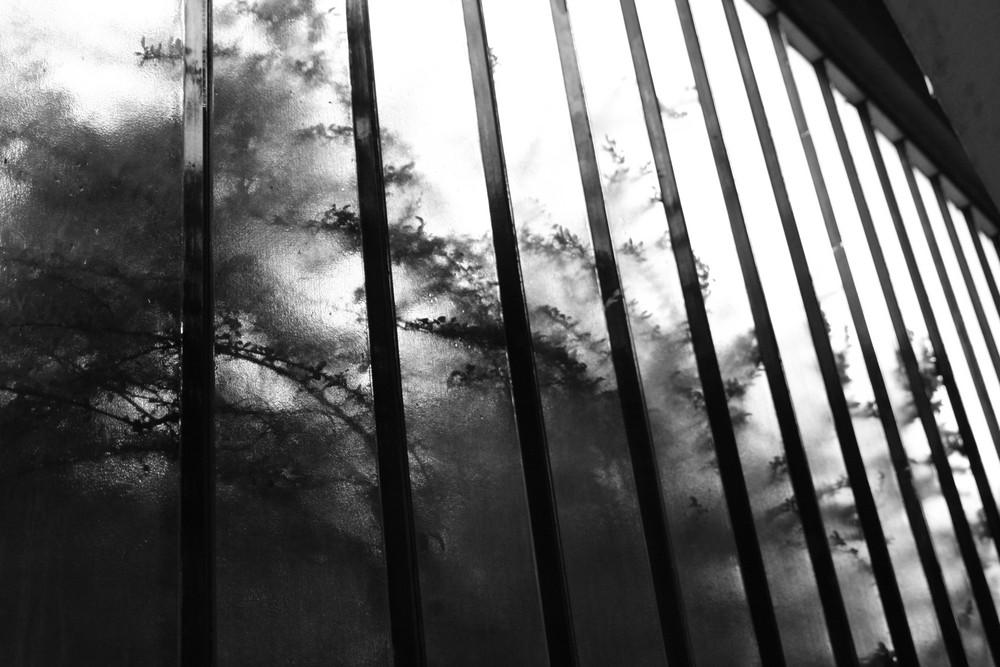 Licht + Schatten