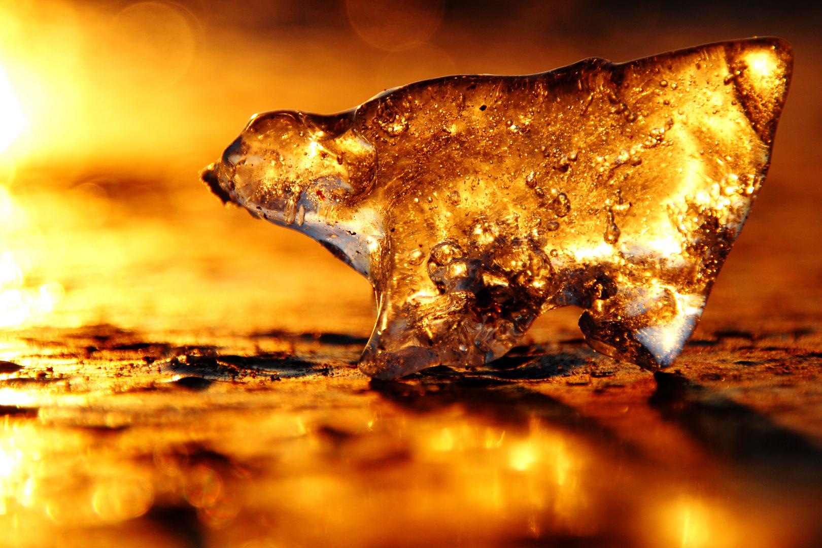 ... Licht und Eis
