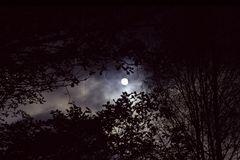 Licht und Schatten 5: Sonne oder Mond?