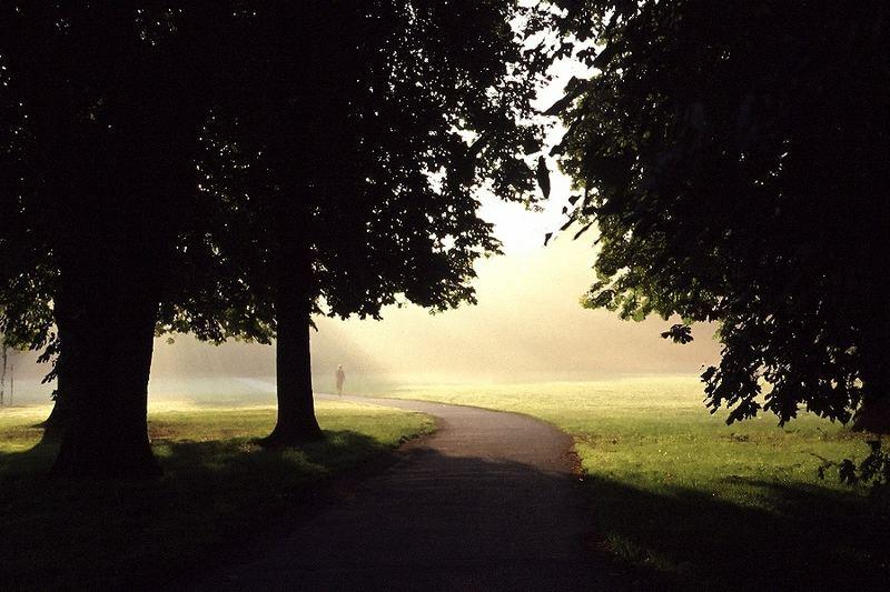 Licht und Schatten 7: Ein Morgenspaziergang