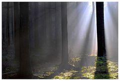 Licht und Schatten, oder....