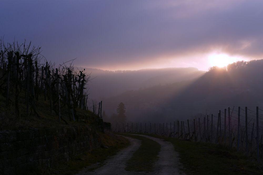 Licht-Weg