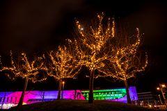 Lichterbäume -2EV